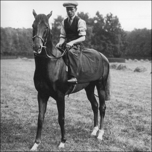 Hyperion being ridden by Tom Theobald